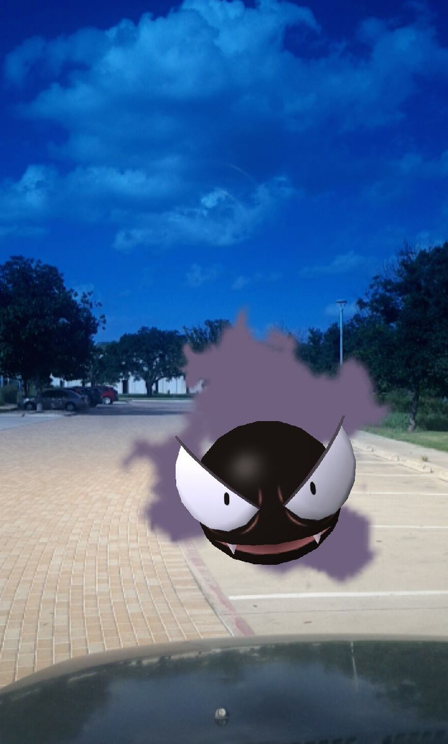 Some pokemon are cute, but a gastly is a little frightening.