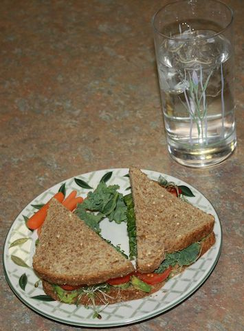 avocado sandwich with sprouts tomatoes and kale, add a glass of cold water for a nutritious lunch
